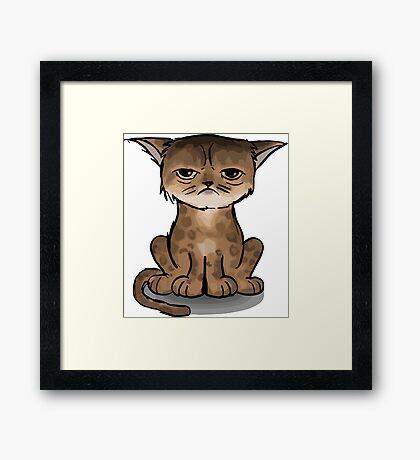 Apache cat Framed Print