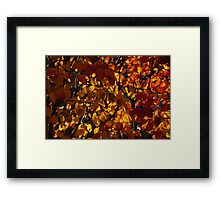 Colourful Sunny Autumn Patterns Framed Print