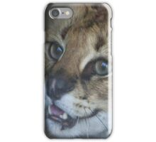 Watch out ... paws and claws! iPhone Case/Skin