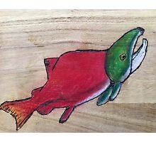 Salmon Photographic Print