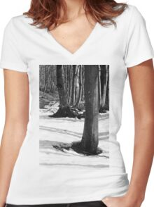 Mount Catria under the snow 01 Women's Fitted V-Neck T-Shirt