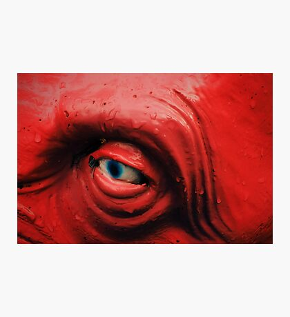 Nail in the Eye Photographic Print