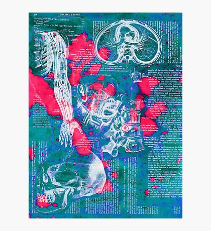 Blue Anatomy Photographic Print