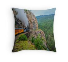 What A Ride ! Throw Pillow