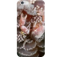 Vertical world iPhone Case/Skin