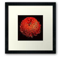 BLOOM SERIES #2 Framed Print