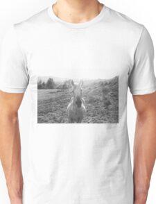 Black and White Horse  Unisex T-Shirt