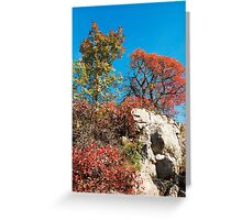 Autumn Colours in the Carso Greeting Card