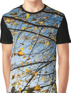 Birch Tree Photography Print Graphic T-Shirt