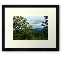 Fern Lake near Cumberland Gap Framed Print