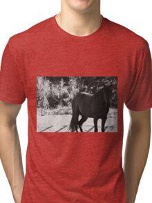 Black and white horse photo Tri-blend T-Shirt