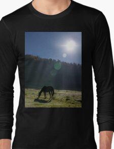 Horse in the sunlight T-Shirt