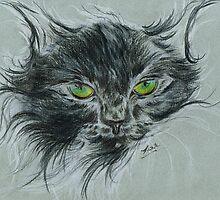 Wild Cat by Teresa White