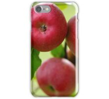 Red apples on branch iPhone Case/Skin