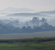 Smoky Hills by Liz Worth