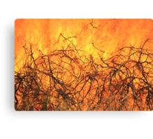Yellow Flames - Wild Bush Fire Canvas Print