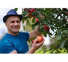 Gardener picking apples Photographic Print
