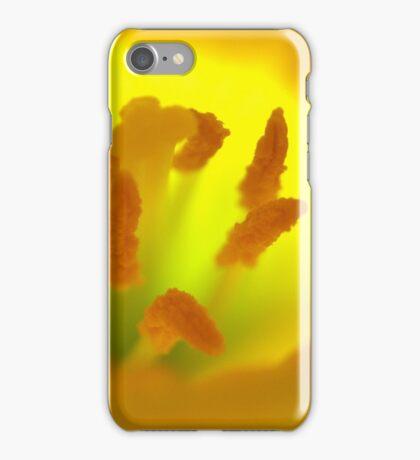 Daffodil  iPhone Case/Skin