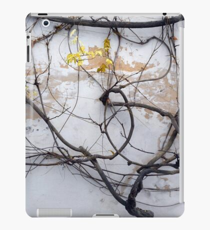 Dry tree branches on a white wall iPad Case/Skin