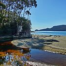 Quiet Corner, Adventure Bay, Bruny Island, Tasmania by PC1134