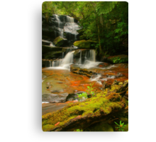 Somersby Falls .. Thanks to Wazza Canvas Print