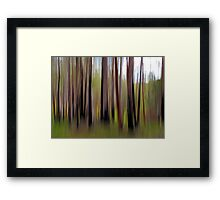 Colours of The Bush Framed Print