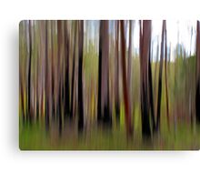 Colours of The Bush Canvas Print
