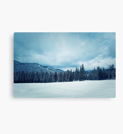 forest hills Canvas Print
