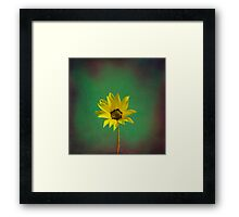 The yellow flower of my old friend Framed Print
