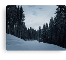 Carpathian forest Canvas Print