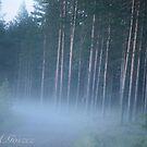 Time travel in the imagination .  I do love Laponia. Dr.Andrzej Goszcz. by © Andrzej Goszcz,M.D. Ph.D