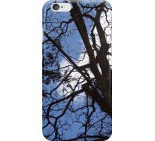 ***TREE/BLUE SKY iPhone Case/Skin