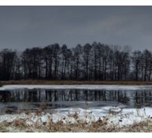 Winter landscape. The forest and the lake in snow. Evening time. Panorama photo Sticker