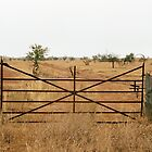 ornate farm gate by Janine Paris