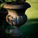 0286  Jenny's Garden by Hazel Hogarth