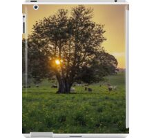 Eureka Sunset iPad Case/Skin