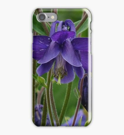 Purple Granny's Bonnets iPhone Case/Skin
