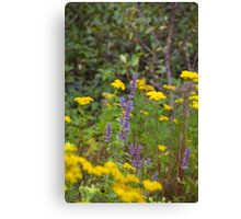 Purple and Yellow Flowers and a Flying Bee Canvas Print