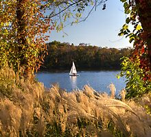 Sailing in the Potomac River by Bernai Velarde