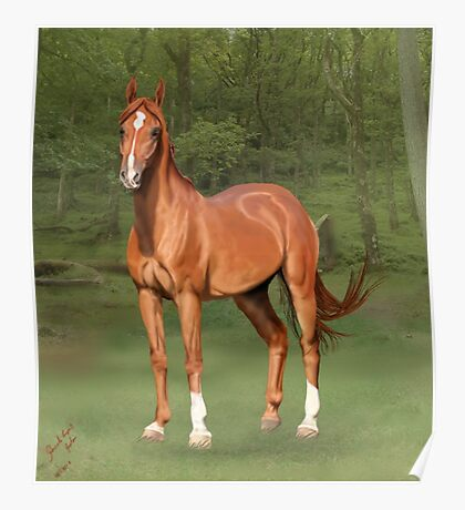 Realistic horse Poster