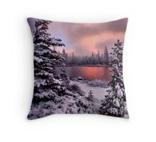 Big Lake  Throw Pillow