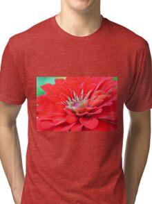 Dahlia Petals Tri-blend T-Shirt