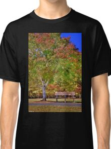 Ninety Six National Historic Site Bench In The Fall Classic T-Shirt