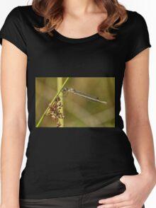 Damselfly Women's Fitted Scoop T-Shirt