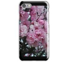 Cherry Blossum photo iPhone Case/Skin