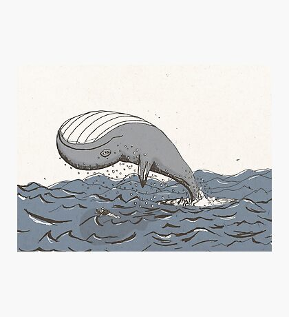 Whale of a Day Photographic Print
