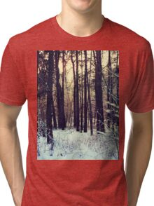 Winter landscape Tri-blend T-Shirt