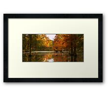 Rombergpark in Autumn Framed Print