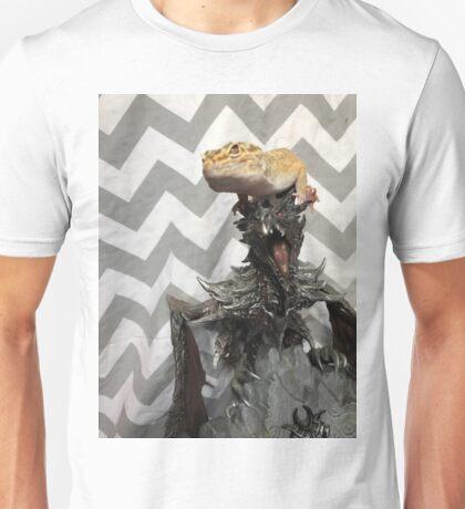 Alduins apprentice (original) Unisex T-Shirt