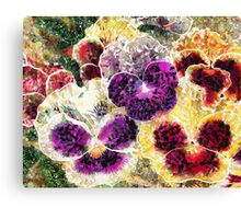 Pansies Flowers Abstract Canvas Print